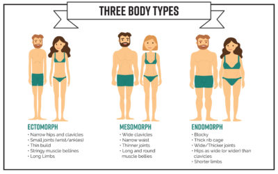 Part 2: What Is Your Body Type & How To Lose Weight?