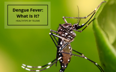 DENGUE FEVER: WHAT IS IT?