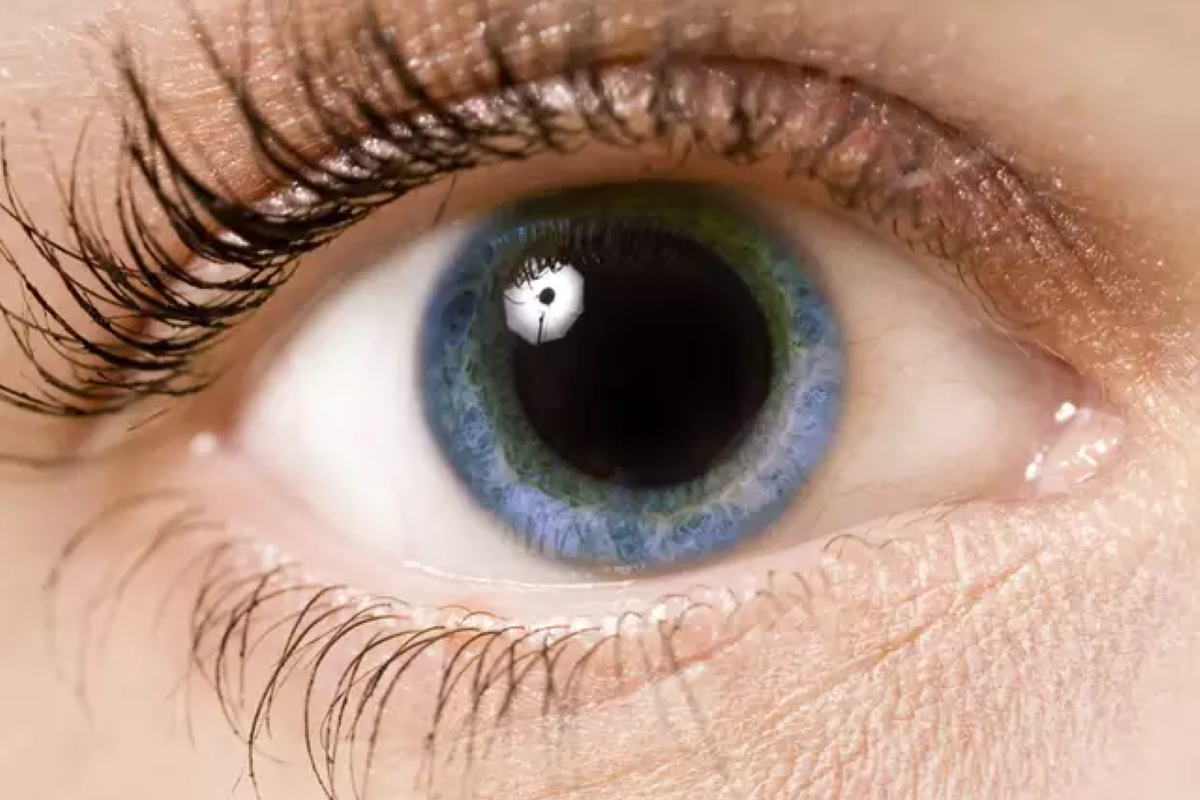 Dilated Pupil Examination by your Eye Doctor